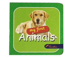 Board Books My First  Animals